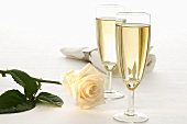 Two glasses of sparkling wine, rose and fabric napkin