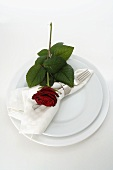 Place-setting with red rose