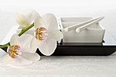 Dishes with chopsticks and orchids (Asia)