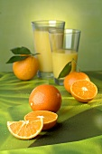 Oranges and two glasses of orange juice