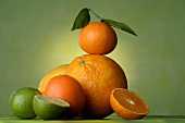 Zitrusfrüchtestilleben