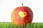 Red apple with heart in grass