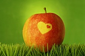 Red apple with heart in grass (green background)