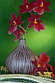 Red orchids in vase
