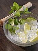 Zutaten für Cocktails: Minze, Limettenschnitze, Eiswürfel