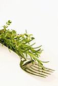 Sprigs of rosemary and thyme on a fork