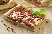 Pieces of salami and mozzarella pizza with basil