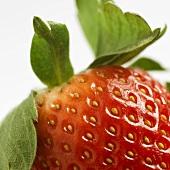 A strawberry, detail