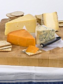 Various cheeses with crackers on a wooden board