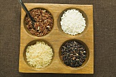 Four different types of rice