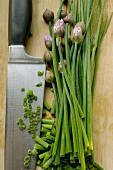 Fresh chives, partly chopped, with knife