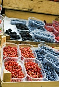 Various types of berries in plastic punnets at a market