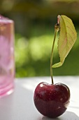 Cherry with stalk and leaf on table in open air