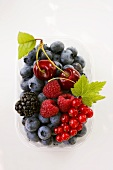 Assorted berries and two cherries in plastic punnet