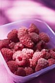Raspberries in plastic container
