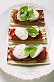 Three tomato and mozzarella toasts with basil