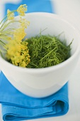 Chopped dill with flower in bowl on blue cloth