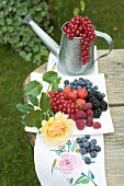 Fresh berries on plate, redcurrants in watering can