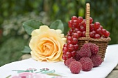 Raspberries, redcurrants in basket & yellow rose on table