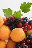Fruit still life with apricots, berries and leaves