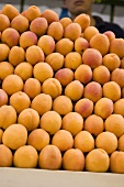 Apricots in a crate at a market