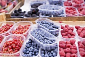 Assorted berries in punnets at a market