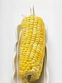 Corn on the cob in white dish