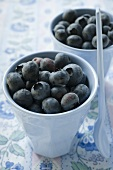 Fresh blueberries in two beakers