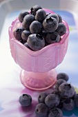 Fresh blueberries in pink glass goblet