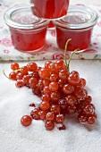Rote Johannisbeeren, Zucker und Johannisbeergelee in Gläsern