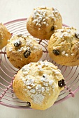Several raisin scones with sugar on cake rack