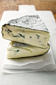 Two pieces of blue cheese on paper