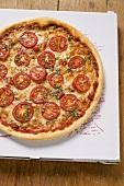 Cheese and tomato pizza with oregano on pizza box