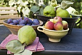 Plums, apples and quinces in bowls on garden table