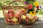 Fresh apples in basket and bowl on stone wall in garden