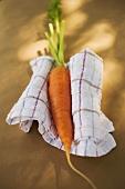 Fresh carrot on tea towel