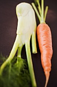 Fresh carrot and Florence fennel bulb
