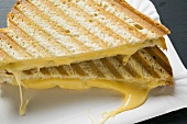 Toasted cheese sandwiches on paper plate