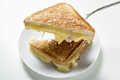 Toasted ham and cheese sandwiches on plate