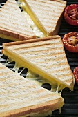 Toasted cheese sandwiches & tomatoes on grill plate (close-up)