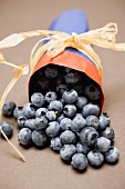 Blueberries in paper bag to give as a gift