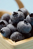 Blueberries with drops of water in woodchip basket (close-up)