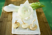 Various types of onions on chopping board
