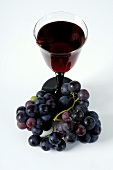 Glass of red wine and black grapes (Trollinger grapes)
