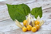 Cape gooseberries with leaves on wooden background