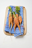Young carrots on coloured cloth on chopping board