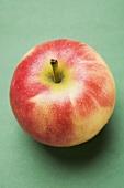 Elstar apple from above