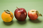 Two red apples, varieties Stark and Elstar, and orange