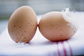Two brown eggs with feathers on tea towel