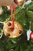 Hand holding gingerbread tree ornament in front of Xmas tree